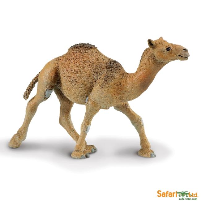Dromedary Camel Vinyl Figure