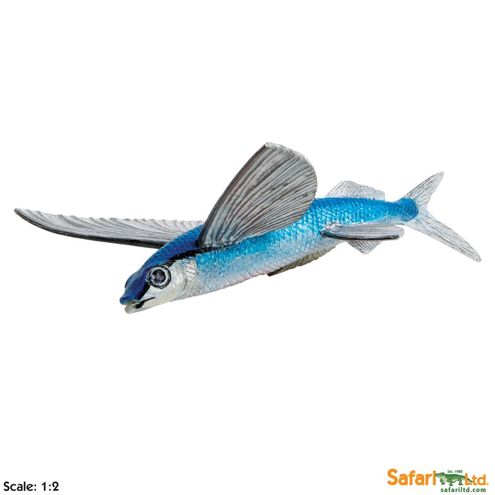 Flying Fish Vinyl Figure