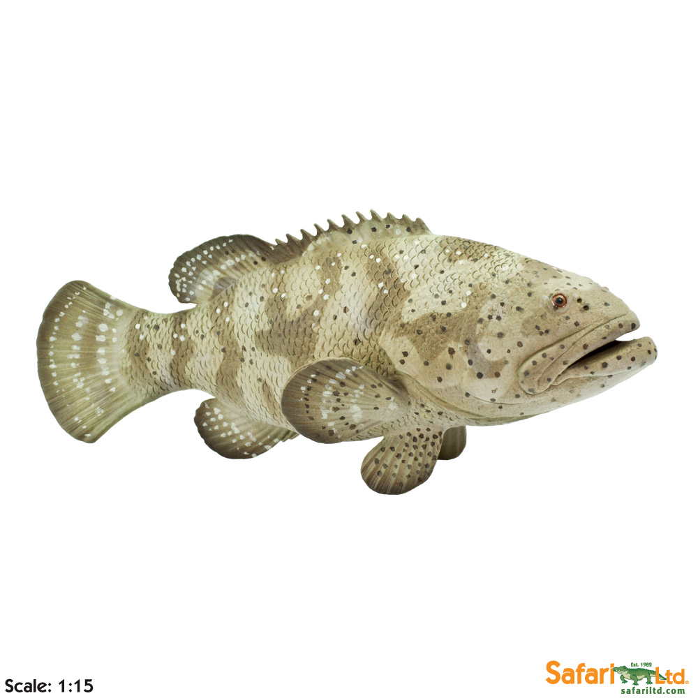 Goliath Grouper Vinyl Figure