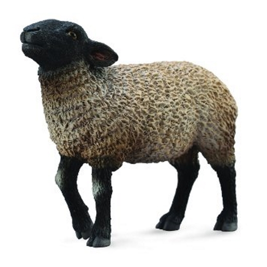 Suffolk Sheep Vinyl Figure