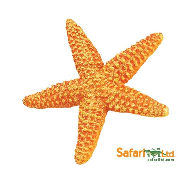 Starfish Vinyl Figure