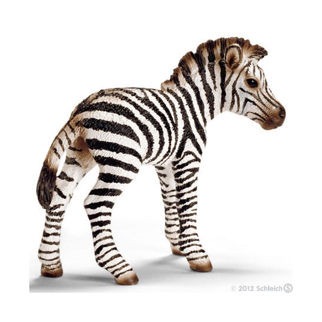 Zebra Foal Vinyl Figure