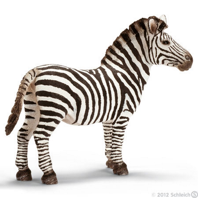 Zebra Male Vinyl Figure