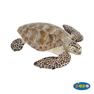 Cacouanne Turtle Vinyl Figure