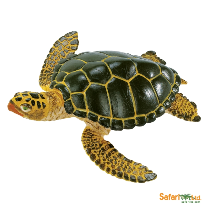 Green Sea Turtle Vinyl Figure