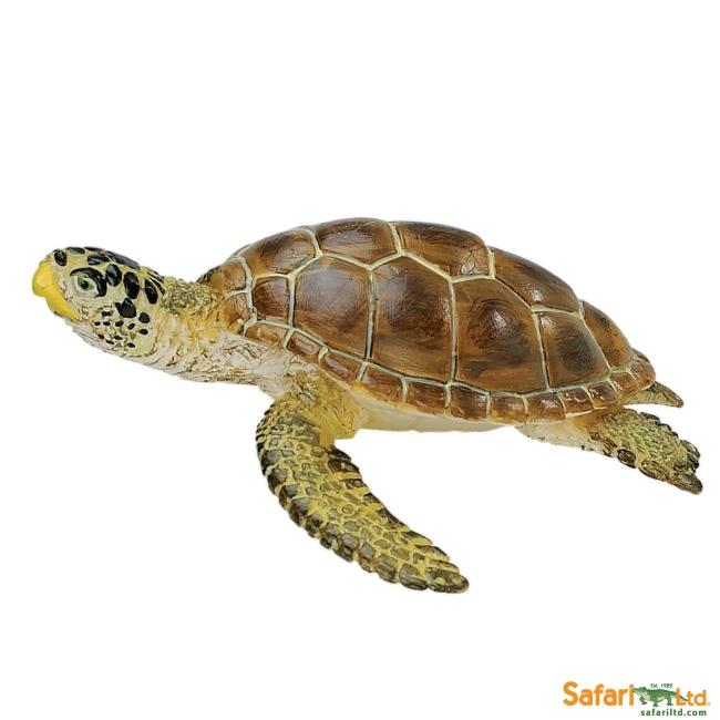 Loggerhead Turtle Vinyl Figure