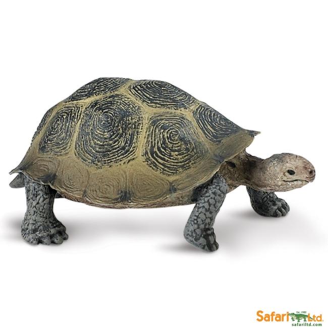 Desert Tortoise Vinyl Figure