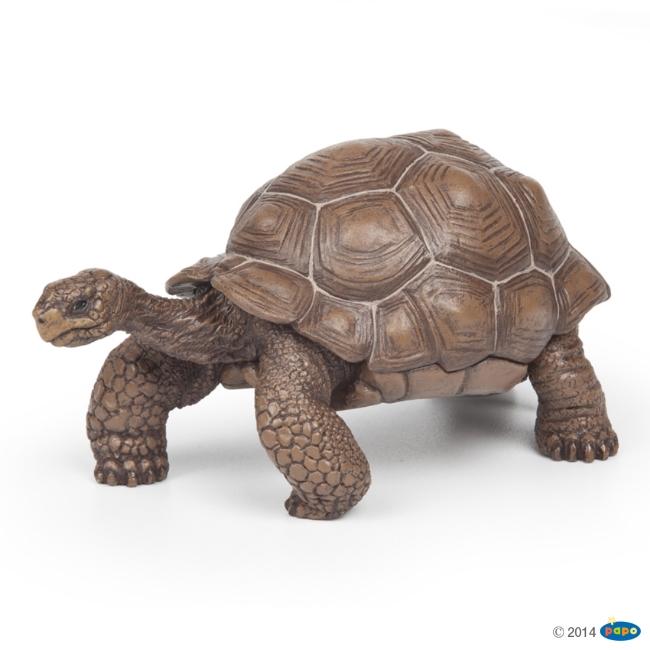 Galapagos Turtle Vinyl Figure