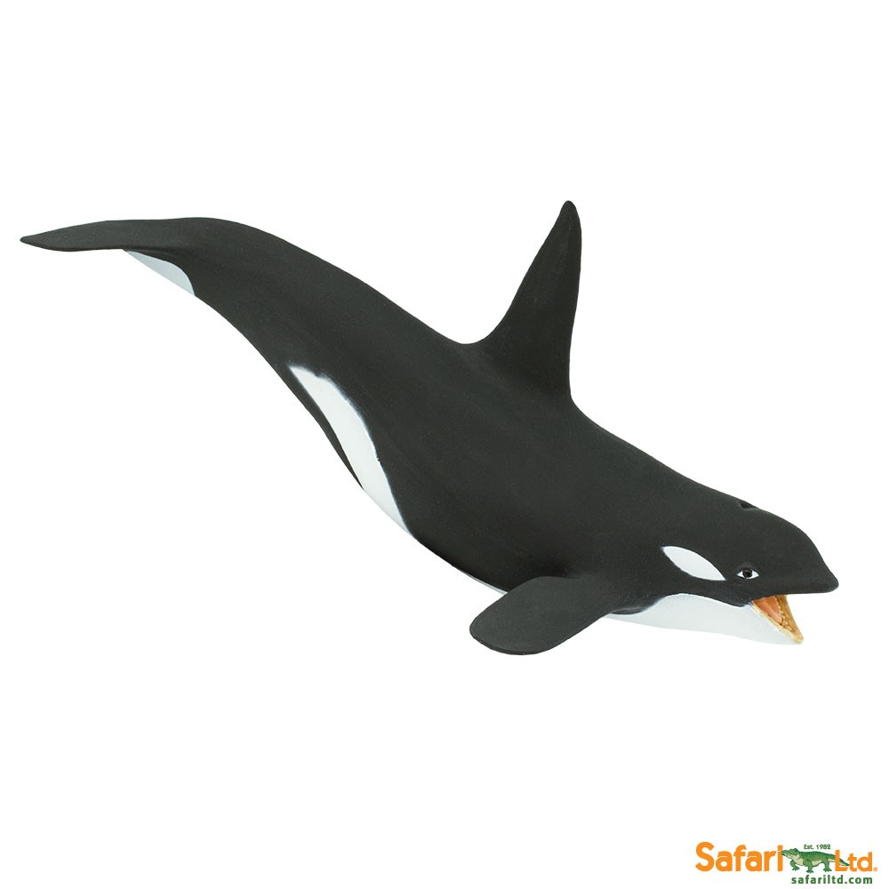 Killer Whale Vinyl Figure