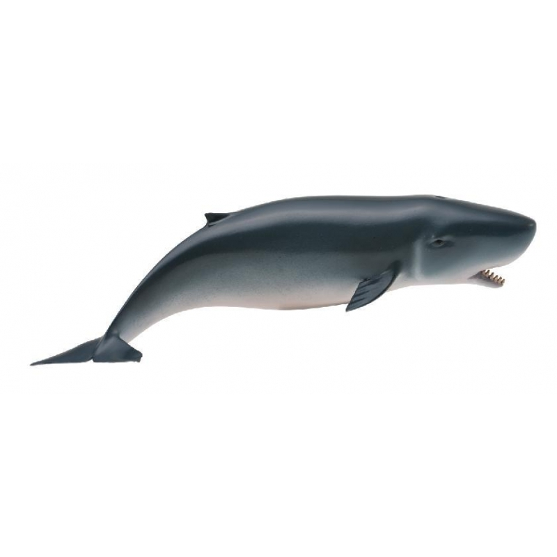 Pygmy Sperm Whale Vinyl Figure
